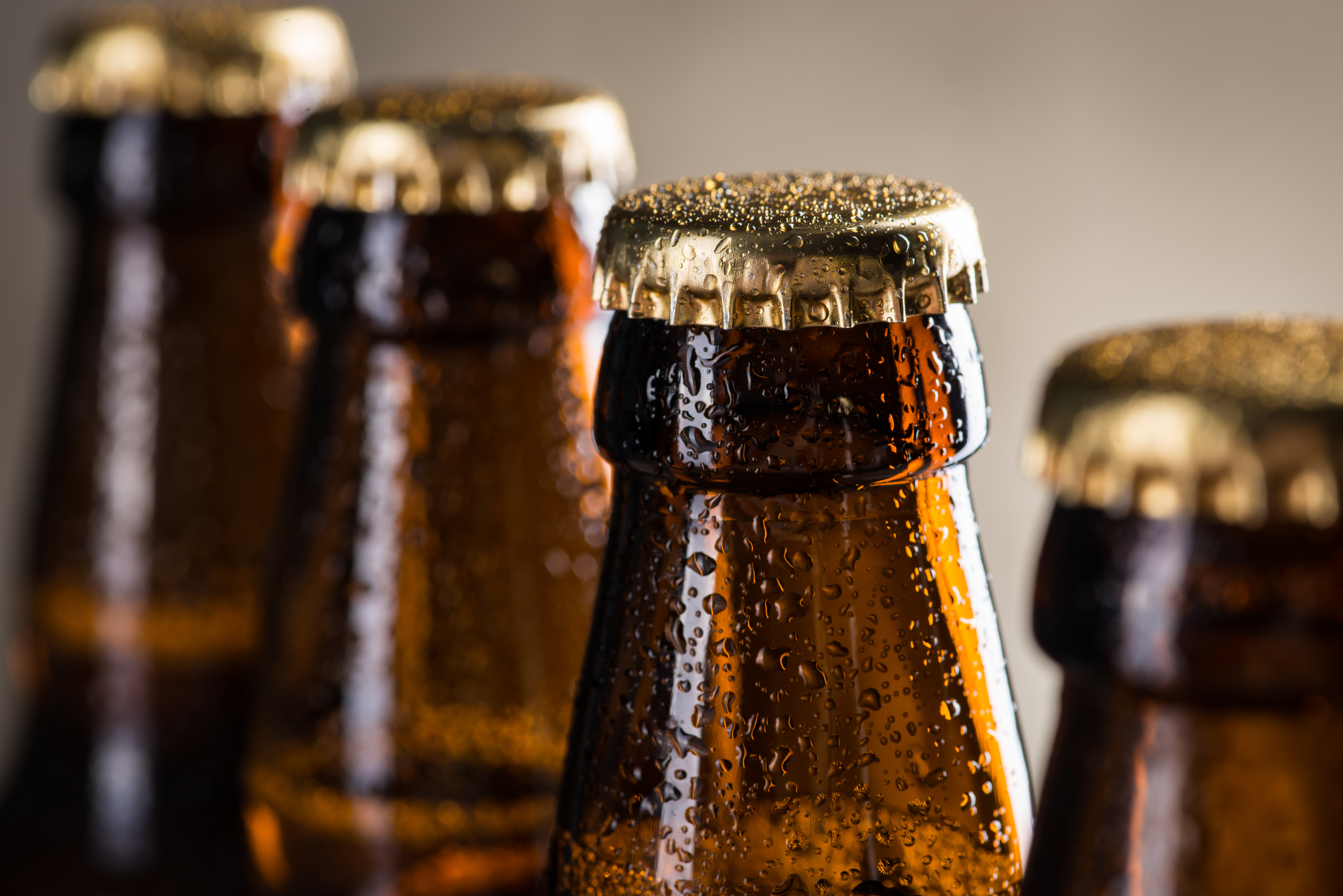 Ice cold beer bottles in a row over the grey concrete wall background