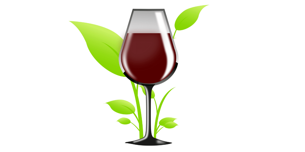 eco friendly wine labels